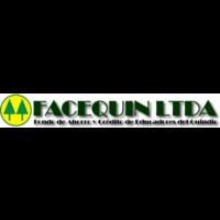 facequin-ltda-logo